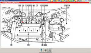 Fiat    Engine    Diagram     Free Wiring    Diagram    For You